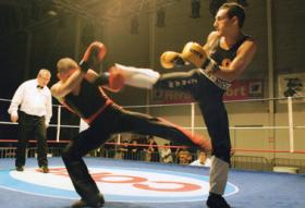 TEYRAN SAVATE POING 34